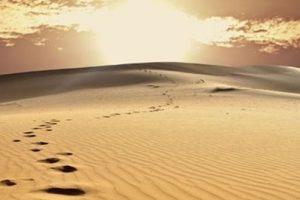 Messaggio del Santo Padre per la Quaresima
